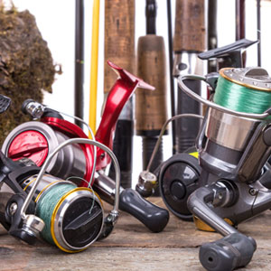 Professional Fishing Reel Repair and Service - Tampa Bay Area